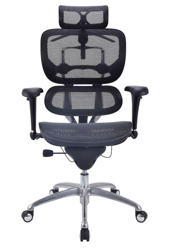 ALS Standart Mesh Chair
