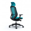 SYLPHY Back Support Chair