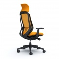 SYLPHY Black Frame Chair